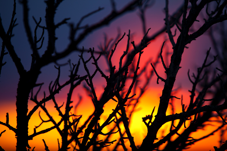 Sunset Contrast Grand Canyon Photo Tips