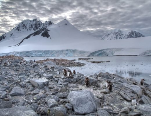 sweeping shot of antarctica landscape with mountains and penguins