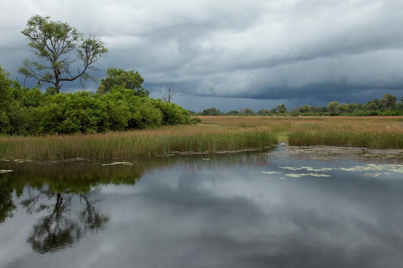 beautiful thunder clouds form over botswana's okavango delta