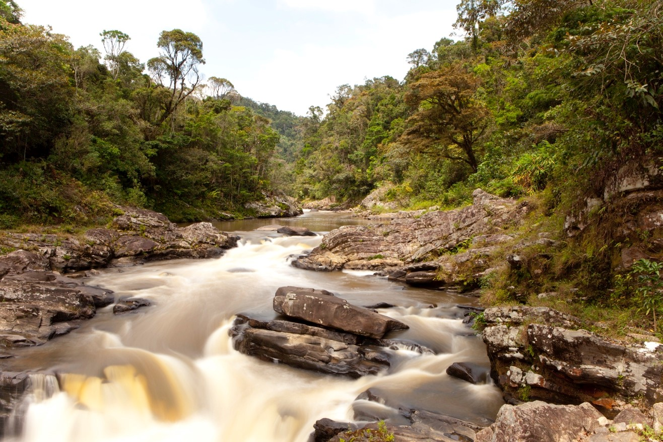 a silky river in the cloud forests of ranomafana national park