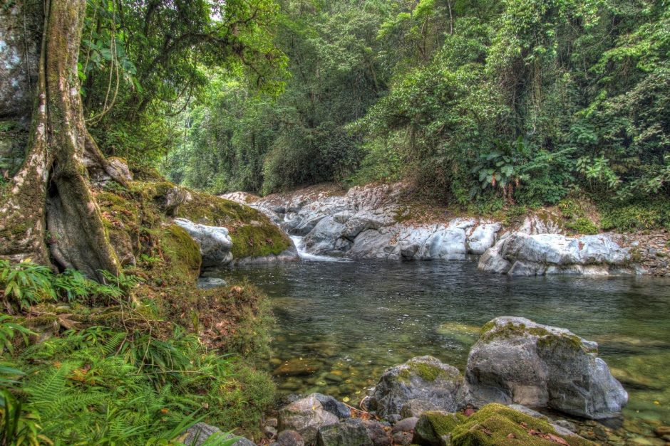 a photo of the central american jungle using HDR, specifically of a small waterfall and river
