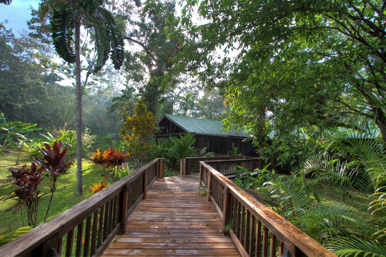 an hdr photo of the pico bonito boardwalk in honduras