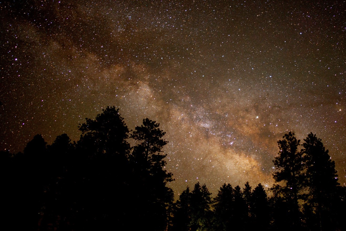 milky way above the forest near the rim of bryce canyon national park