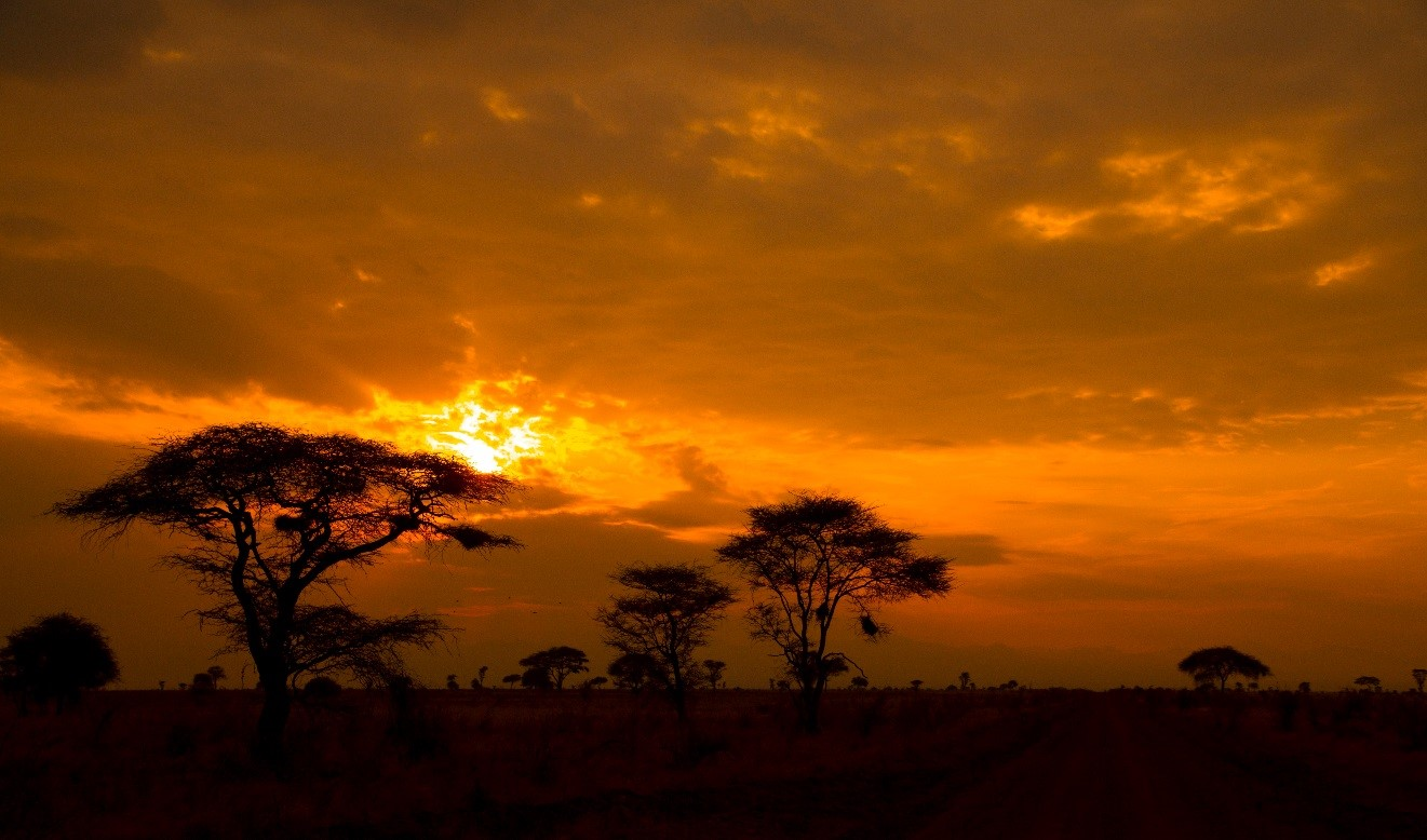 a vibrant orange and red sunset blasts through the clouds in east africa