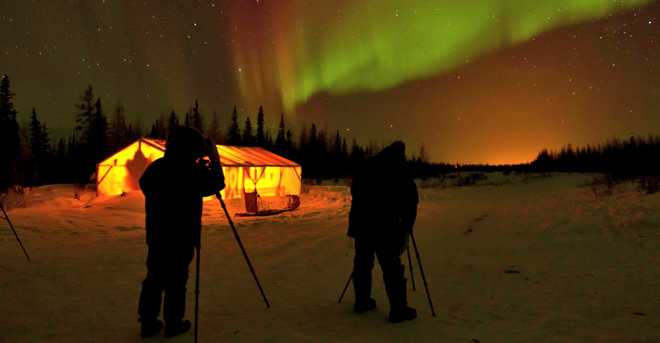 photographers set up their tripods to capture the northern lights in front of a sled dog tent