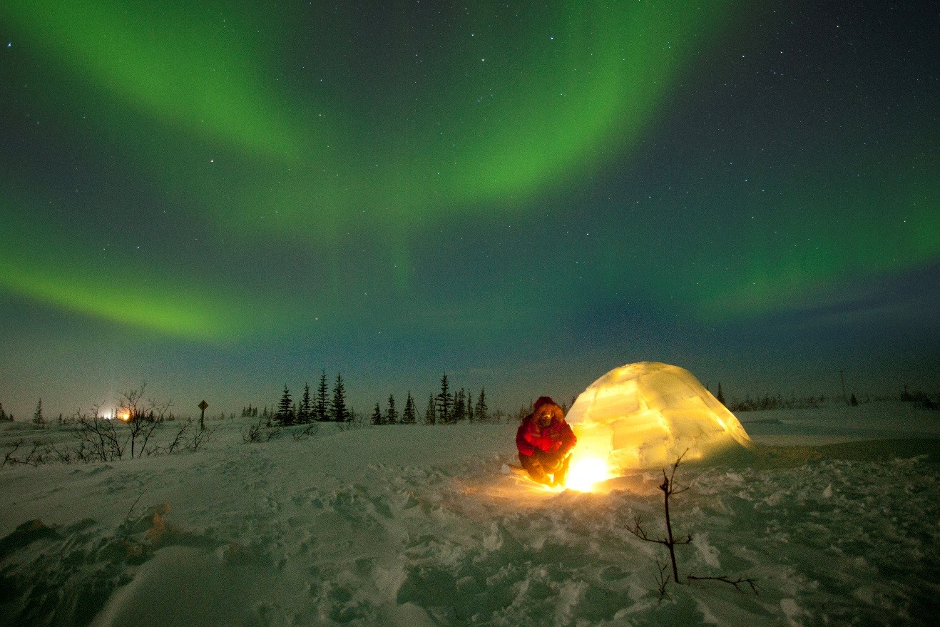 Court Whelan in front of an igloo watching the northern lights