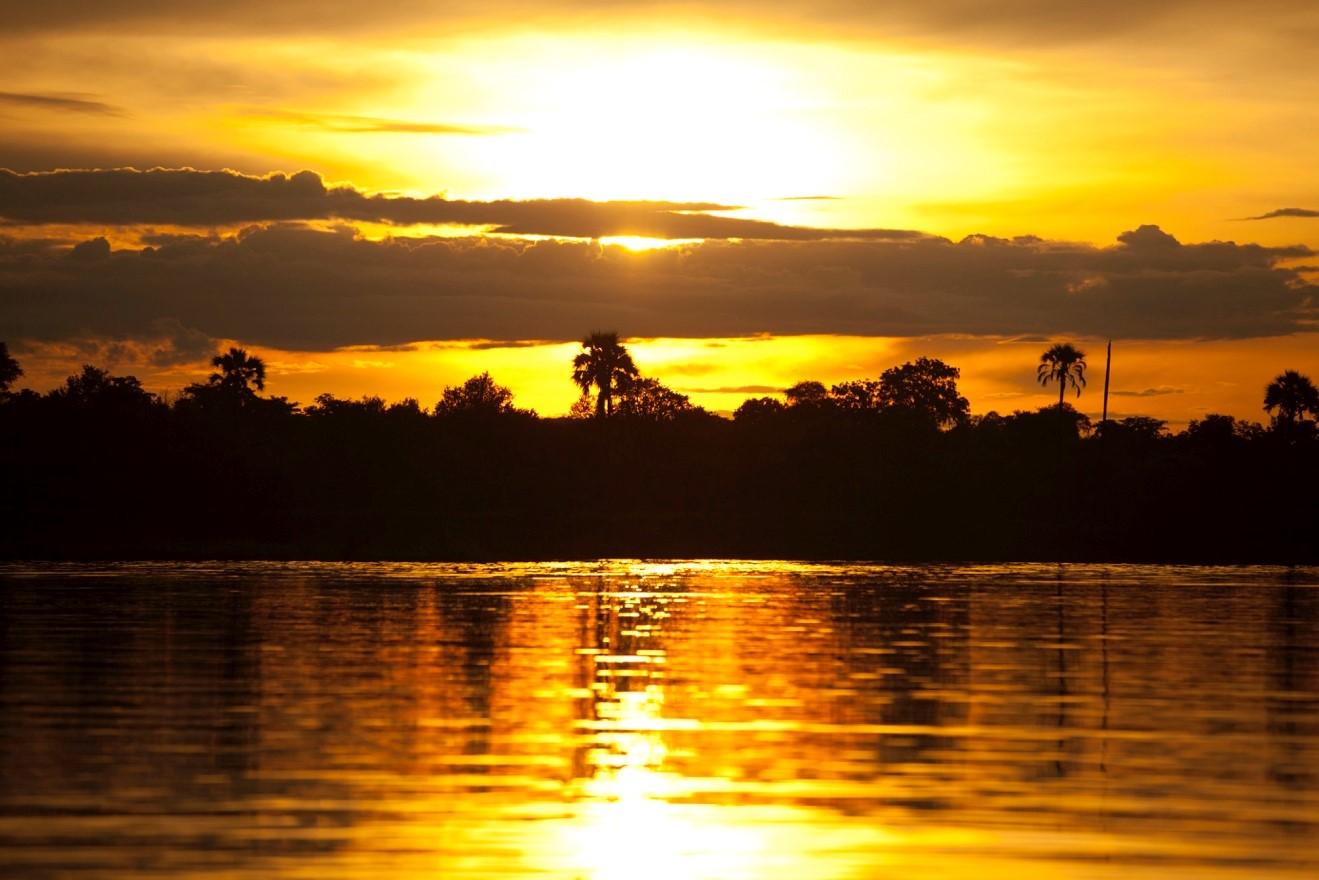 a stunning sunrise on Botswana's okavango delta illuminates the sky