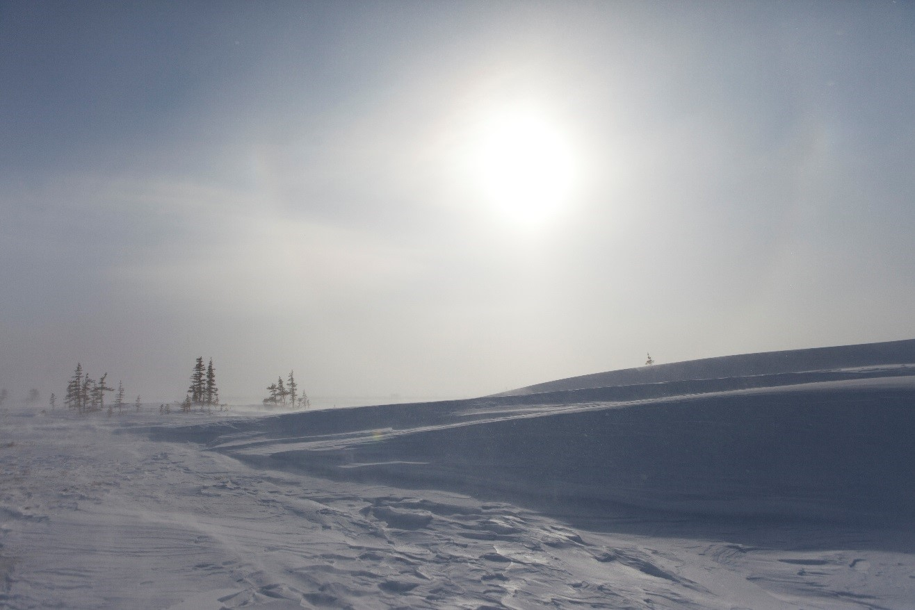 a cold view of Churchill's arctic tundra with a shrouded sun behind some clouds