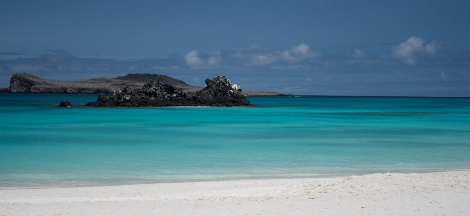 a photo of green water and blue skies over a beach in the galapagos