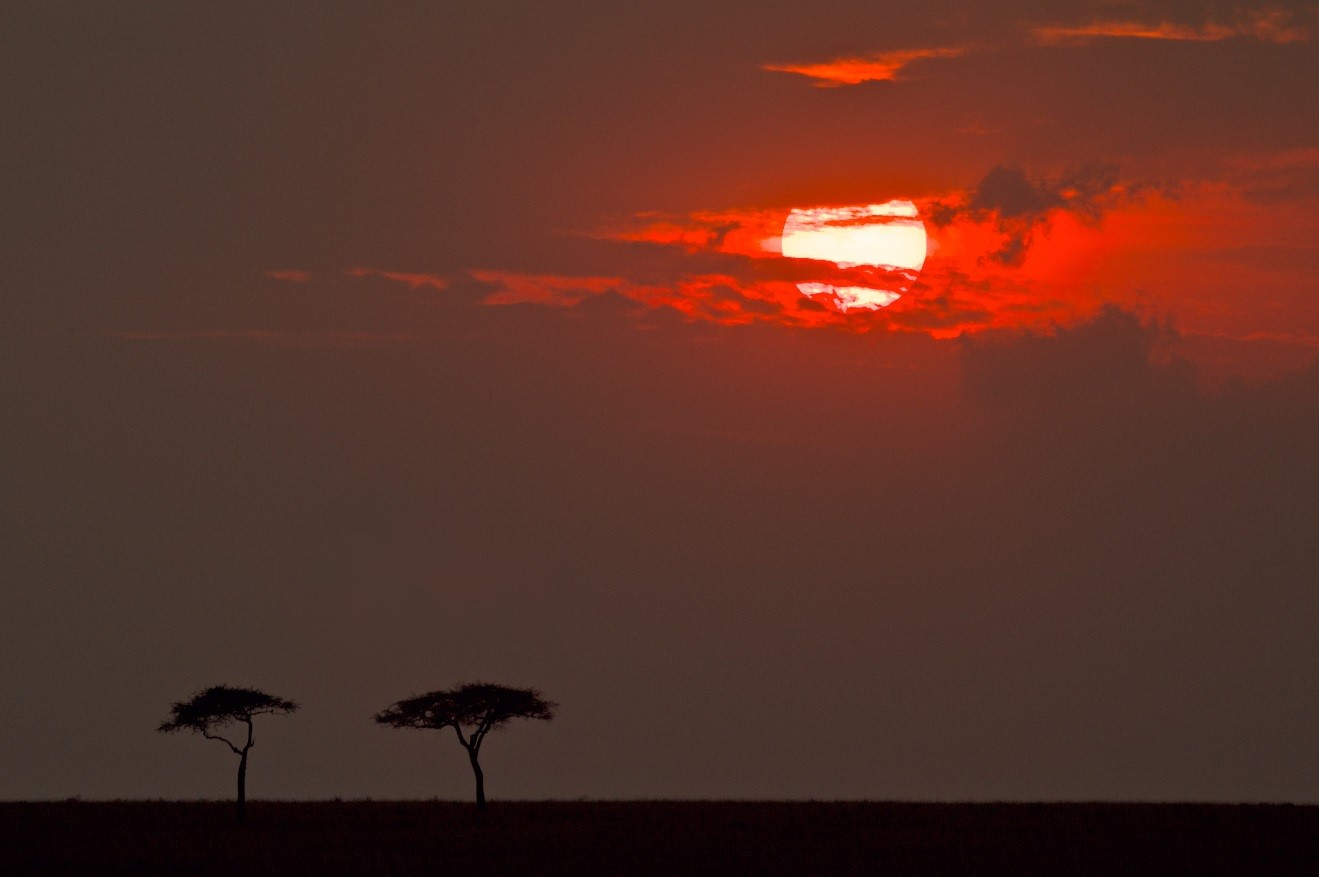 a unique monochromatic sunset lingers over the masai mara in kenya