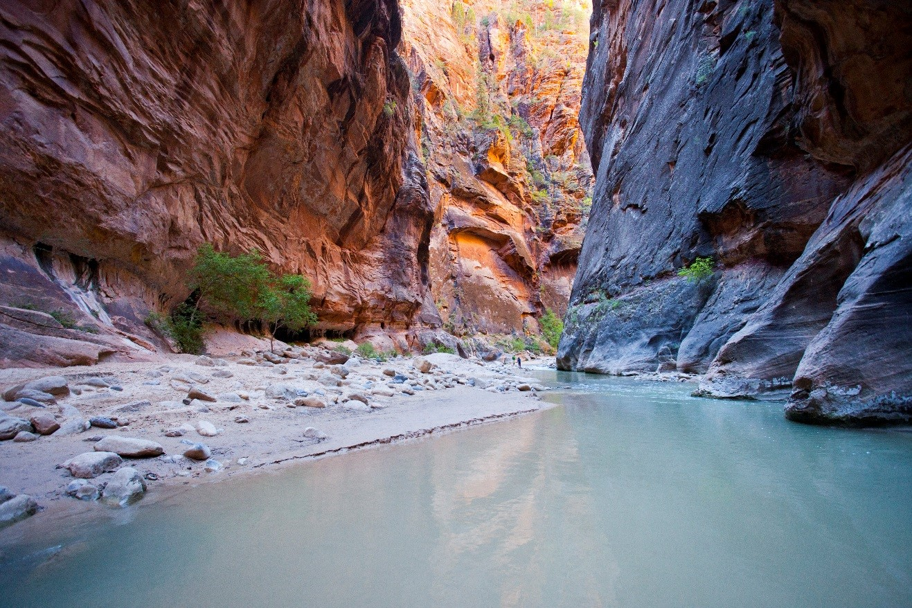 the narrows in Zion National Park with golden lighting and beautiful water of the virgin river