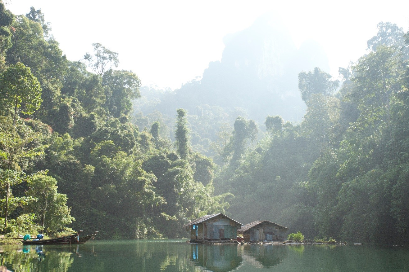 An intriguing photo of khao sok national park with fishing village in the foreground