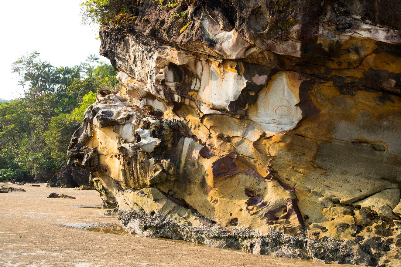 a towering sandstone formation in Borneo's bako island