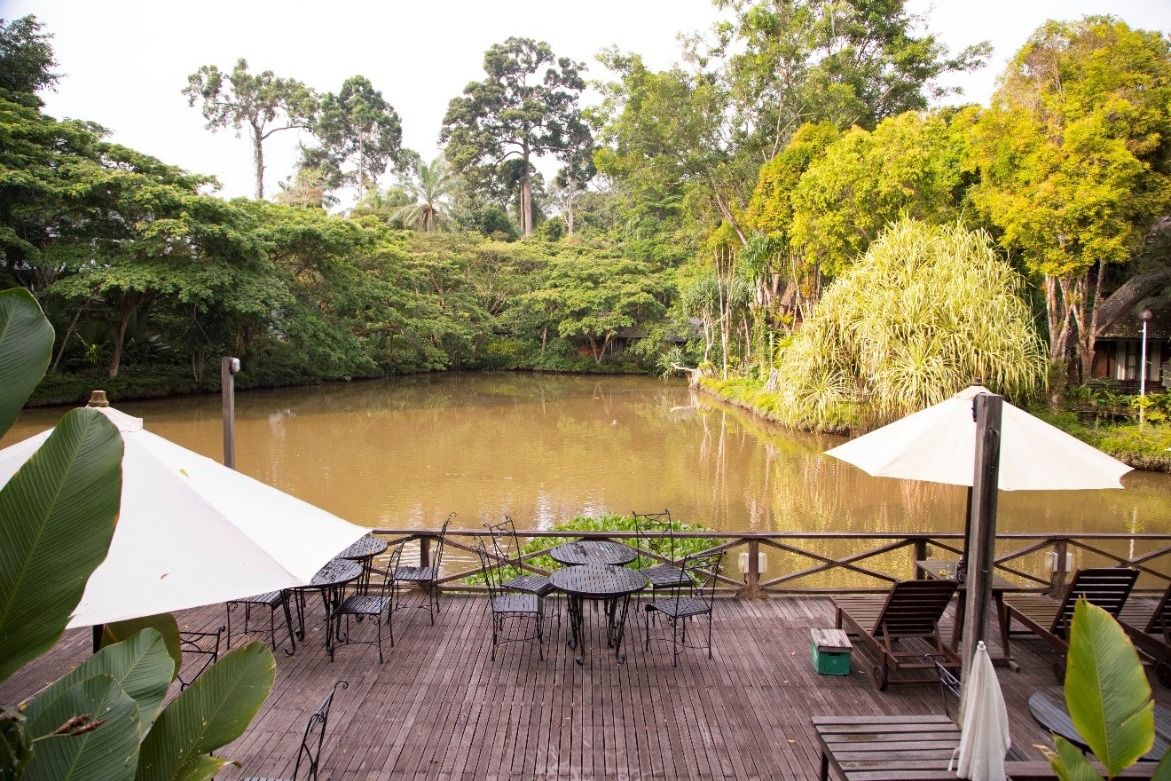 a travel photo of a small lagoon outside of Sepilok Nature Resort