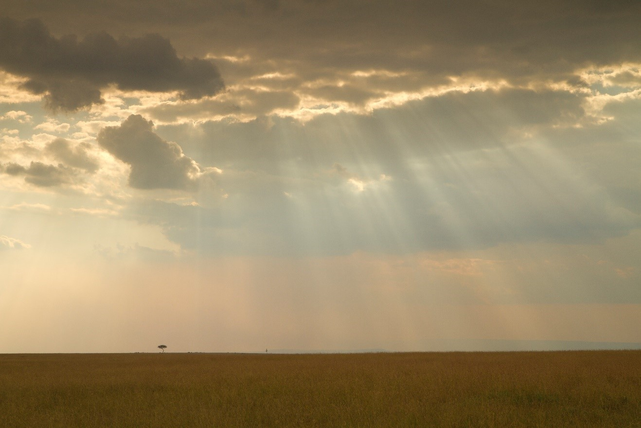 a large open plain reveals a striking afternoon with sun rays through the clouds