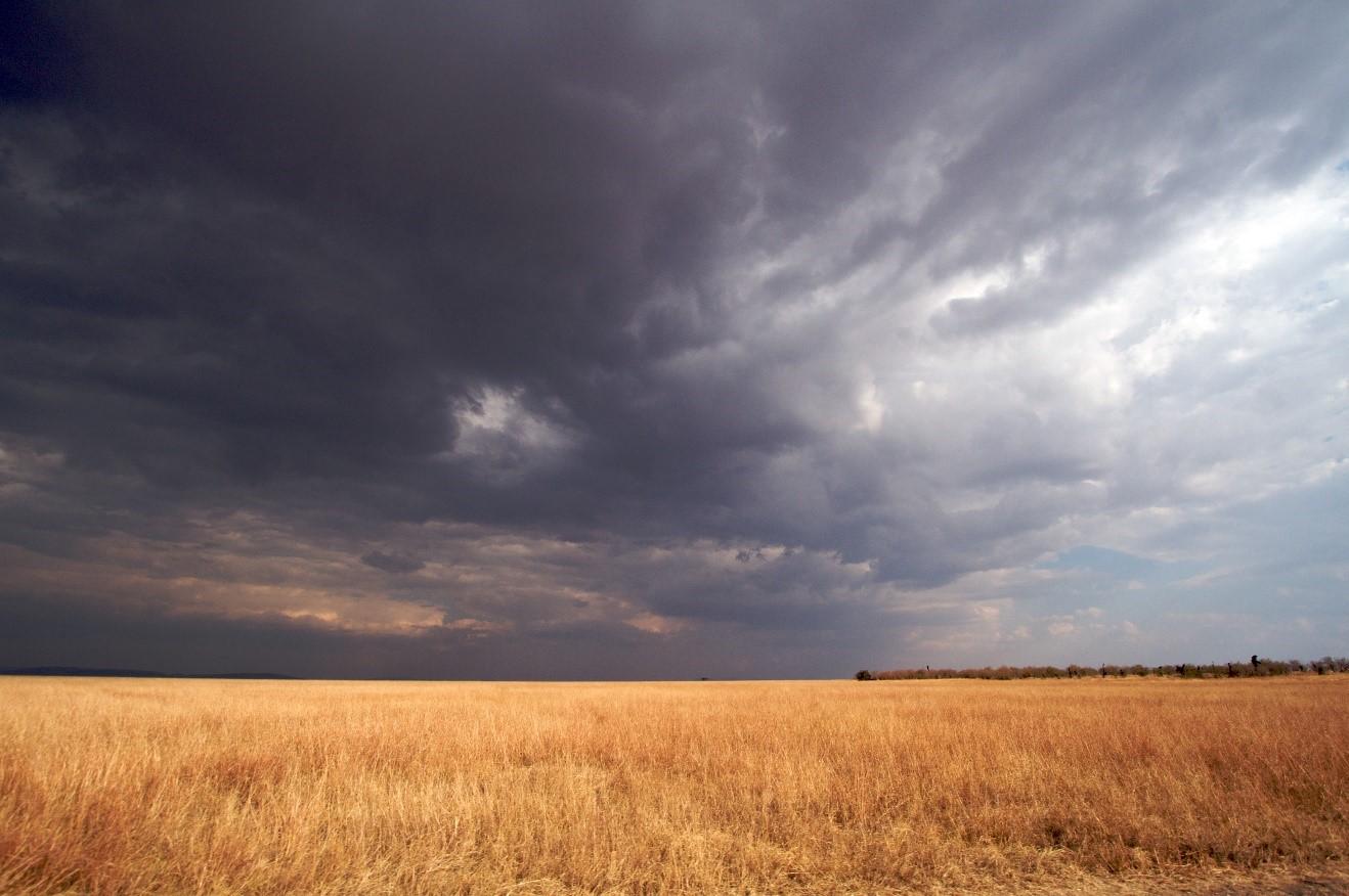 a thunderstorm rolls in over kenya's masai mara