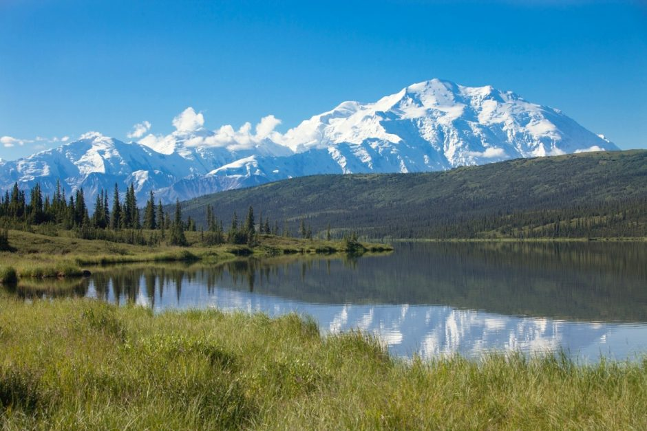 a stunning blue sky photo of mt. denali taken from reflection pond