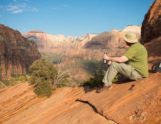 a traveler stares out at the main Zion Canyon from an overlook