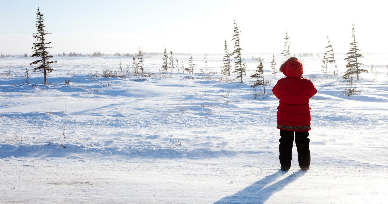 a solo woman in red looks at the tundra from the highway in churchill, manitoba, canada