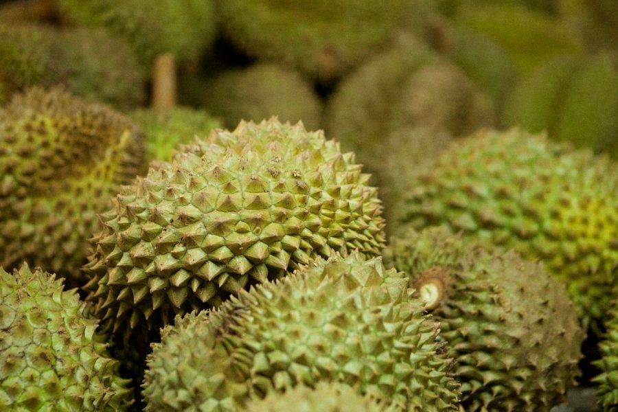a narrow depth of field photo of durian fruit
