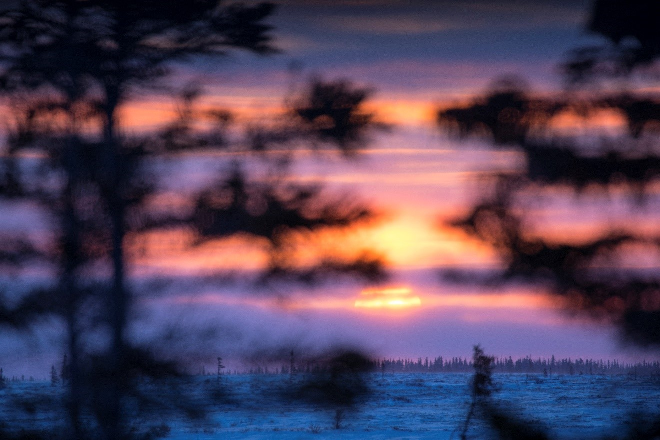 a cool blue arctic sun descends behind the horizon in Churchill Canada