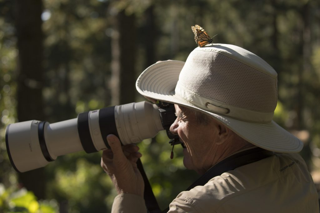 a photographer has a monarch butterfly on his hat as he photographs the monarch migration