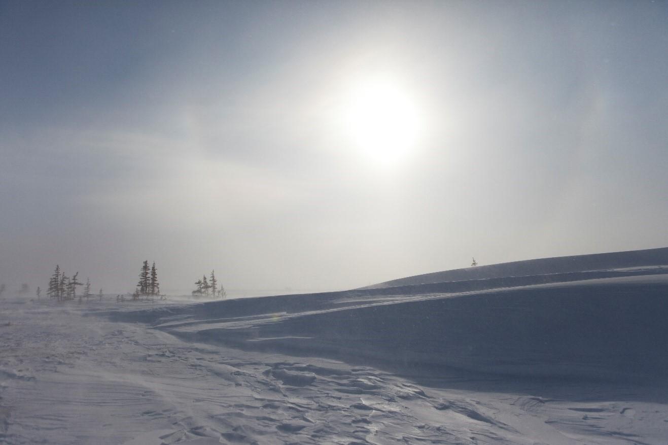 a desolate arctic landscape