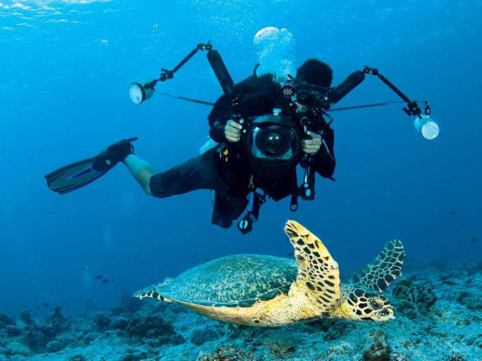 a photographer with a large camera photographs underwater