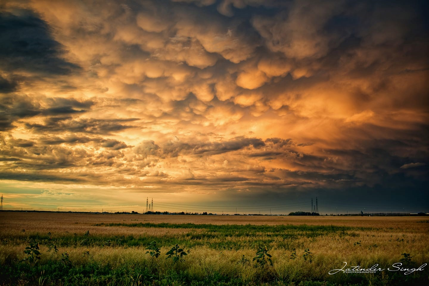 amazing orange and yellow mammatus clouds form over a prairie