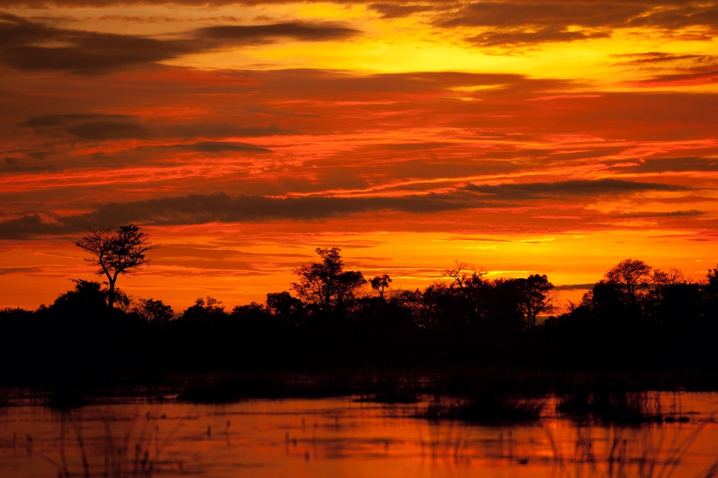 an orange and red sunset shines over the okavango delta