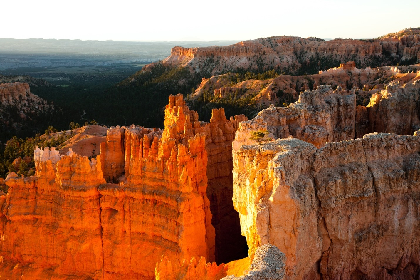 textured rock in bryce canyon national park