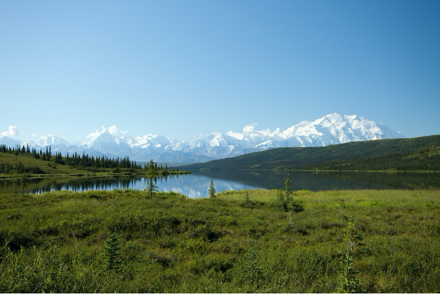 Denali rises above the rest of the range with a reflection upon