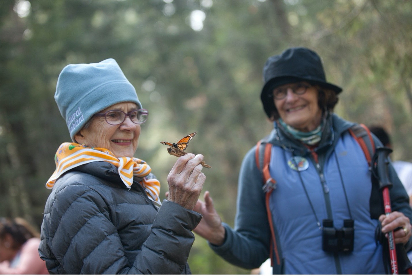 a woman observes a monarch butterfly with wonder on her face