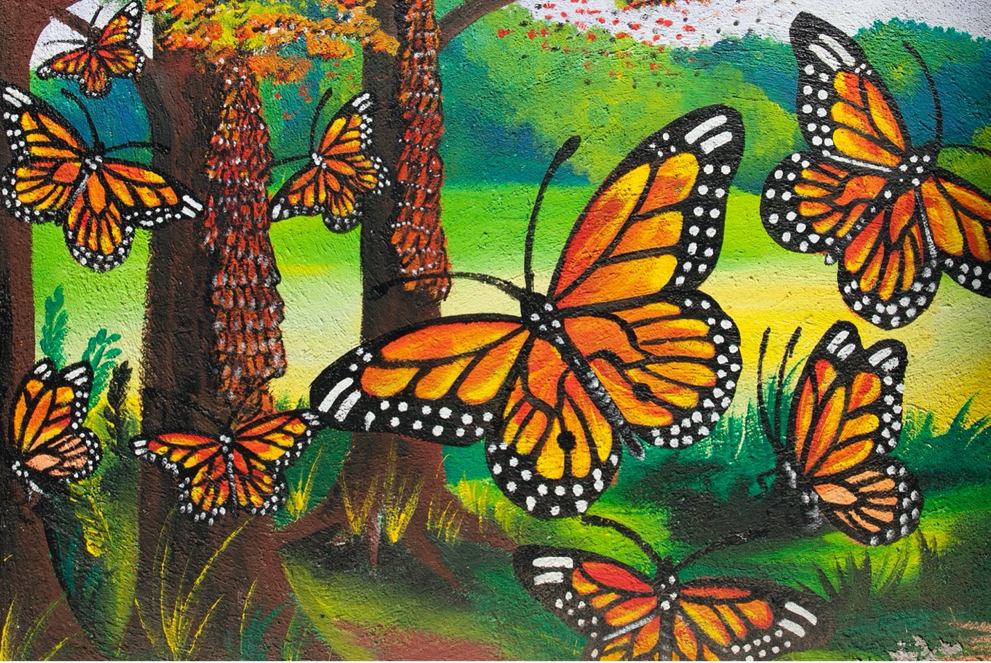 a mural at El Rosario biosphere reserve showcases a brilliant monarch butterfly